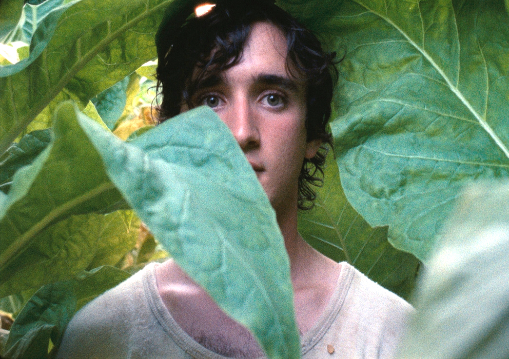 Happy As Lazzaro Review